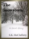 The Snowstorm - S. K. McClafferty