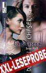 Engelszorn - Demon Chaser 2 - Leseprobe - Sara Hill