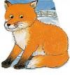 Pocket Fox (Pocket Pals Board Books) - M. Twinn, Pam Adams