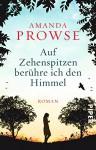 Auf Zehenspitzen berühre ich den Himmel: Roman - Amanda Prowse, Karin Dufner