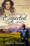 Mail Order Bride: Not What He Expected (Mail Order Brides Book 1) - Annie Boone