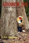 Goober Joe: Coming of Age a Civil War Novel - Bob Whetstone