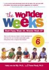 The Wonder Weeks, Leap 6 - Hetty van de Rijt, Frans Plooij