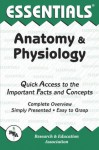 Anatomy and Physiology Essentials (Essentials Study Guides) - Research & Education Association, Jay M. Templin, Anatomy Study Guides