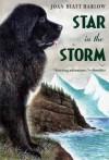 Star in the Storm (Aladdin Historical Fiction) - Joan Hiatt Harlow