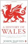 A History of Wales - John Davies