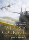 Wings of Courage: Tales from America's Elite Fighter Groups of World War II (General Aviation) - Tony Holmes