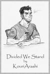 Divided We Stand - KouriArashi