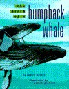 The Birth of a Humpback Whale - Robert Matero, Pamela Johnson