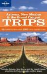 Arizona New Mexico & the Grand Canyon Trips (Regional Travel Guide) - Becca Blond, Josh Krist, Jennifer Denniston, Wendy Yanagihara