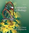 Loose Leaf Version for Essentials of Biology - Sylvia S. Mader, Michael Windelspecht