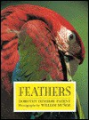 Feathers - Dorothy Hinshaw Patent
