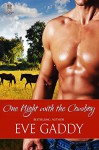 One Night with the Cowboy (Whiskey River Book 2) - Eve Gaddy
