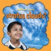 What Are Stratus Clouds? - Molly Aloian