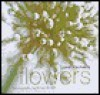Jane Packer's Flowers - Jane Packer, Simon Brown