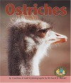 Ostriches (Early Bird Nature Books) - Caroline Arnold
