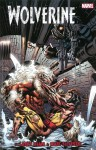 Wolverine by Larry Hama & Marc Silvestri Volume 2 (Wolverine (Marvel Numbered)) - Larry Hama, Peter David, Marc Silvestri, Larry Stroman, Andy Kubert
