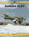 Junkers Ju-87 Black Cross V5 - Karl-Heinz Regnat, Helmut Erfurth