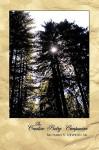 The Creative Poetry Companion - V. Newton Sr. Richard V. Newton Sr, V. Newton Sr. Richard V. Newton Sr