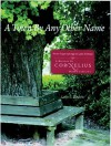 A Town by Any Other Name: From Virgin Springs to Lake Norman: A History of Cornelius, North Carolina - Leslie B. Rindoks