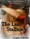 The Last Stallion - Christine DePetrillo