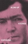 Blow-up and Other Stories by Cortazar, Julio (2004) Paperback - Julio Cortazar