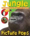 Picture Pops Jungle - Roger Priddy, Matt Denny, Simon Mugford, Robert Tainsh