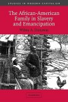 The African-American Family in Slavery and Emancipation (Studies in Modern Capitalism) - Wilma A. Dunaway