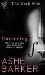 Darkening (The Dark Side, #1) - Ashe Barker