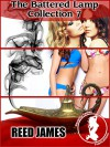 The Battered Lamp Collection 7 (Genie, Harem, Supernatural, Tentacle, Taboo, Older Woman/Younger Man, Menage Erotica) - Reed James