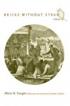 Bricks Without Straw: A Novel - Albion Tourgée, Carolyn L. Karcher