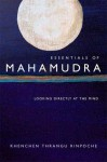 Essentials of Mahamudra: Looking Directly at the Mind - Khenchen Thrangu