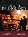 Juvenile Delinquency - Frank M. Schmalleger, Clemens Bartollas