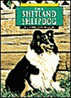 Shetland Sheepdog - Charlotte Wilcox