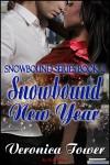 Snowbound New Year - Veronica Tower