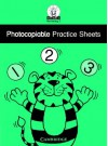 Photocopiable Practice Sheets (First Skills In Numeracy 2) - Sue Atkinson, Sharon Harrison
