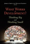 What Works in Development?: Thinking Big and Thinking Small - Jessica Cohen