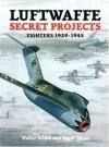 Luftwaffe Secret Projects: Fighters, 1939-1945 - Walter Schick, Ingolf Meyer, Elke Weal, John Weal