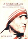 A Revolution of Love: The Meaning of Mother Teresa - David Scott