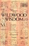 Wildwood Wisdom - Ellsworth Jaeger, Lloyd Kahn