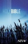 NIV Outreach Bible - Blue Wheat cover - Biblica