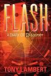Flash: A Diary of Disaster - Tony Lambert