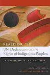 Realizing the UN Declaration on the Rights of Indigenous Peoples: Triumph, Hope and Action - Paul Joffe, Jennifer Preston
