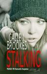 Stalking: A PAVAD Christmas Novella (PAVAD:FBI Romantic Suspense Book 9) - Calle J. Brookes