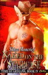 Naked on the Staircase (Time Guardians) - Skhye Moncrief