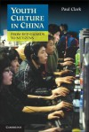 Youth Culture in China: From Red Guards to Netizens. Paul Clark - Paul Clark