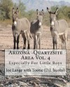 Arizona - Quartzsite Area Vol. 4: Especially for Little Boys - Joe Lange