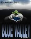 Blue Valley - Christine DeMaio-Rice