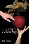 The Journey to Destiny - John J. Terry