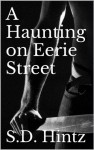 A Haunting on Eerie Street - S.D. Hintz